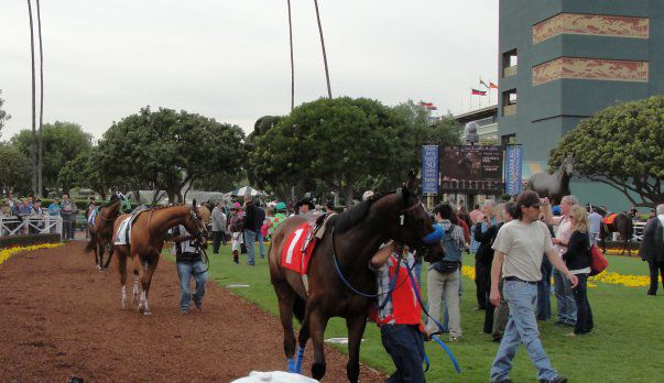 Santa Anita Park Free Video Analysis For Today S Racing Digest